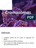 Teoría 2 Urp - Cromosomas y Técnicas de Análisis_2019-2