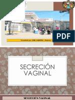 SECRECION VAGINAL Y OTROS CULTIVOS.pptx