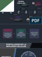 Linea de Tiempo Teoria y fundamentos de la biologia  Celular