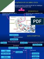 bioelementos-y-biomolculas-1218558388720374-8