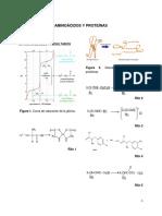 Aminoácidos y Proteínas 1