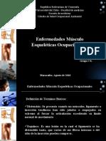 Enfermedades Musculo Esqueleticas Ocupacionales