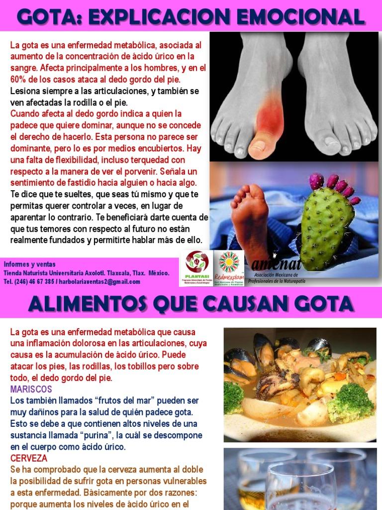 Gota la alimentos que causan