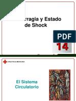 Capítulo 14 - Hemorragia y Estado de Shock