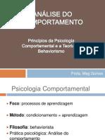 PRINCIPIOS BASICOS DE ANALISE DO COMPORTAMENTO