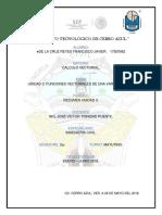 CV_Delacruz_Reyes_Francisco_Javier_T3.pdf