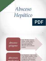 abscesoheptico-130724194903-phpapp02