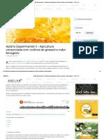 Apiário Experimental II - Apicultura Consorciada Com Cultivos de Girassol e Nabo Forrageiro - A.B.E.L.H.A