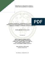 ACTIVIDAD ANTIUREASA, ANTITIROSINASA....2019 para tesis.pdf