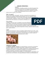 Animales Industriales.docx