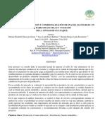 PROYECTO DE INTRODUCCION Y COMERCIALIZACIÓN DE SNACKS SALUDABLES EN LOS BARES DE ESCUELAS Y COLEGIOS DE LA CIUDAD DE GUAYAQUIL.pdf