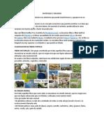 MATERIALES E INSUMOS - DIAPOSITIVA.docx