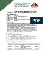 PLAN DE TRABAJO DE RECURSOS PROPIOS DE LA I 2019.docx