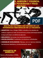 VIOLENCIA Y AGRESIVIDAD.pptx