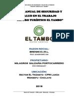 Plan Anual de Seguridad Tambo