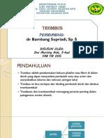 3. Dwi - Trombus