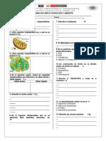 2019 Examen Citoplasma Nucleo Transporte