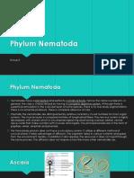Phylum Nematoda.pptx