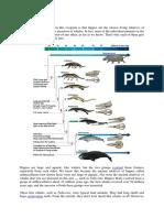 The evolution of hippos (indonesian translation)