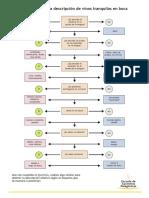 Esquema descripcion de Vinos.pdf