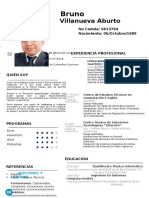 Curriculum Vitae Puro