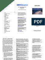 Estructura divisional de apa.pdf