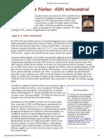 Homínidos Fósiles_ ADN Mitocondrial