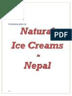 Naturals_BusinessPlan.pdf