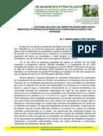 Evaluación de La Efectividad Biológica Del Nematicida Biodes Nema Contra Nemátodos Fitoparásitos en Pepino Bajo Condiciones de Agricultura Protegida