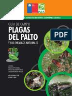 FITOSANITARIO NR38782.pdf