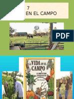 7. La Vida en El Campo