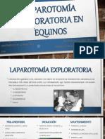 Laparotomía Exploratoria en Equinos