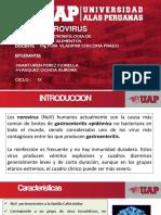 EXPO DE MICRO (1)