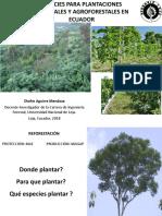 EspeciesparareforestacinySAFEcuador2018(1)