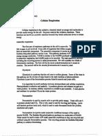 CellularRespiration.pdf