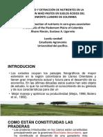 Presentación suelo.pptx