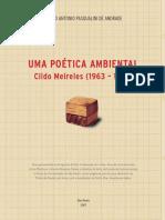 Uma Poetica Ambiental - Cildo Meireles Algo Sobre Historiografia Da Arte