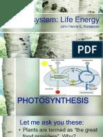 Photosynthesis-Intro.pdf