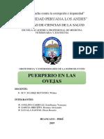 PUERPERIO OVEJA.docx