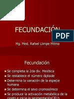 Fecundacion