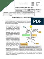 Ficha de Laboratorio 1- III