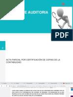 Auditoria y Dictamen 8