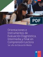 orientaciones-e-instrumentos-de-evaluacion-diagnostica-intermedia-y-final-en-comprension-lectora-i-medio-mineduc.pdf