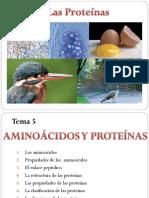 aminoacidos-proteinas.ppt