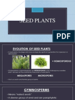 seed plant
