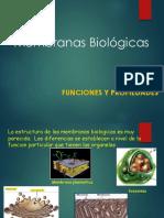 membranas-biologicas (1)