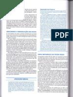 Páginas de Junqueira e Carneiro - Histologia Basica - 10ed - Português2