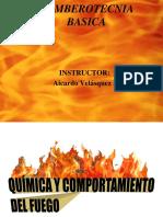 Quimica Del Fuego