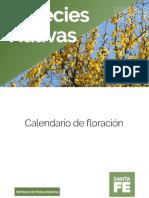 arboles nativos argentina