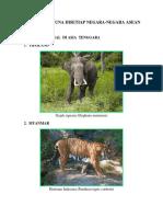 Flora Dan Fauna Disetiap Negara-negara Asean